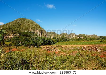 Panorama of the Vinales Valley with the Mogotes