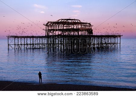 Brighton, United Kindom, derelict west pier, the metal frame work of the derelict West Pier at sunset, the sea is reflecting blue and pink and the sky has a deep pink glow, there are lots of birds flying a round the pier which are silhouetted by the sun,