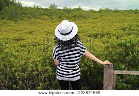 One Female Tourist Admiring Vibrant Green Golden Mangrove Field in Rayong Province of Thailand