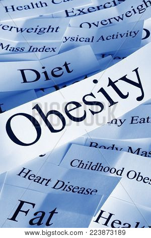 Obesity concept - obesity and some of its problems