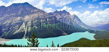 Panoramic view of Peyto Lake in Banff National Park in the Rocky Mountains, Alberta, Canada.