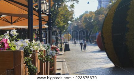 A city pedestrian zone on a summer day going into perspective, with a box of flowers on the foreground, some street decorations and cafe tents