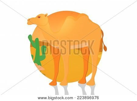 A two-humped camel. Bactrian. Cute camel with shadow. Domesticated animal from Central Asia. Beast of burden. Artiodactyla. Ship of the desert. On desert sunset background with cactus. Flat vector.