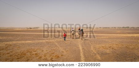 Camel Riding On Thar Desert In Jaisalmer, India.