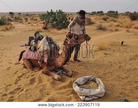 Jaisalmer, India - Mar 4, 2012. A Man With Camel On Thar Desert In Jaisalmer, Rajasthan, India. Jais