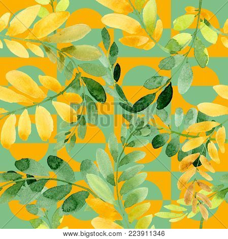 Autumn leaf of acacia pattern in a hand drawn watercolor style. Aquarelle acorn for background, texture, wrapper pattern, frame or border.