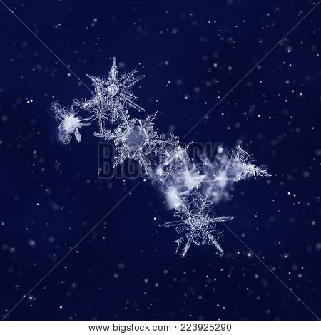 Snow crystals on dark blue background like Ursa Major star constellation