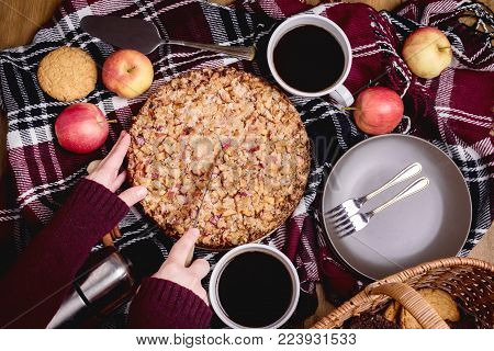 Tasty homemade apple pie Apple pie Apples Cinnamon Plate Woolen blanket Wooden background Top view Picnic Thermos Picnic basket