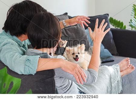 Asia couple love and puppy dog concept - Asian couple in love feeling whit lovely puppy dog in living room on sofa and copy space. Use for couple and pet artwort.
