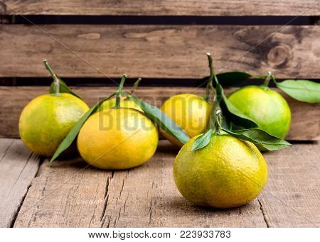 Ripe Mandarine with Leaves Tangerine Mandarine Citrus on Wooden Table Background Citrus fruits Horizontal
