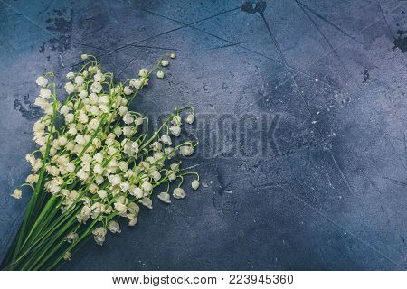 Lilly of the valley flowers on gray background with copy space, retro toned
