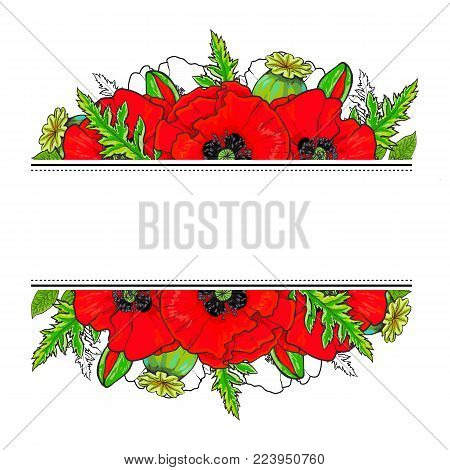 Greeting card, banner design with red hand drawn poppy flowers and space for text, vector illustration isolated on white background. Greeting card, banner decoration with poppies and place for text