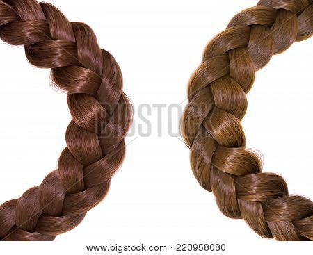 Women's hair isolated on white background. A brown braid of hair