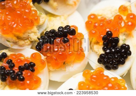 red caviar and black caviar . Photos in the studio