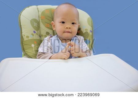 Cute little Asian 11 months old  baby boy child sitting & waiting for food in a high chair isolated on blue background, Smiling baby ready to eat, Happy kid concept