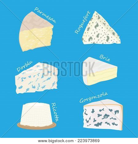 Collection of cheeses parmesan, brie, roquefort cheese, gorgonzola Vector illustration
