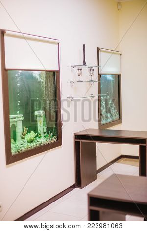 Empty beautiful room in a day spa with with aquarium and fish