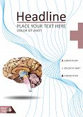 Realistic human brain in low poly. Cover  template of dissected brain. Book, banner. Cerebrum, epithalamus brainstem, cerebellum, cortex, thalamus, hippocampus, hypothalamus, cerebral lobes. Vector poster