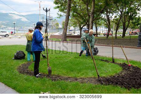Novorossiysk, Russia - May 20, 2018: Janitors Do Landscape Design. Planting Flowers On A Flower Bed.