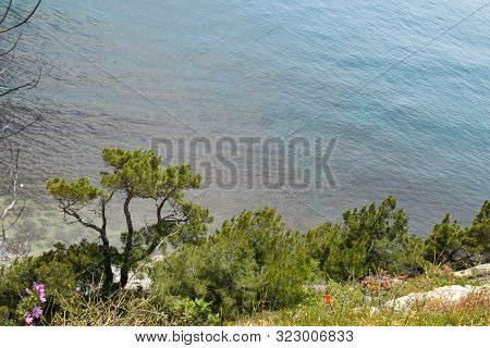 Seascape, View From The Cliff, Tsemes Bay Near Novorossiysk.