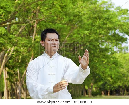 chinese kung fu of Taiji portrait position