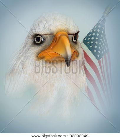 Bald Eagle Art