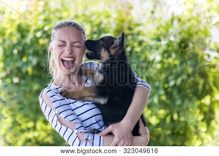 Happy Girl Holding A German Shepherd Puppy And Smiling. Buying And Acquiring A Dog, The Joy Of Meeti