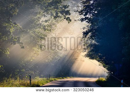 Mystical Landscape Of Falling Sunlight On The Road. Sunrise And Morning Fog.