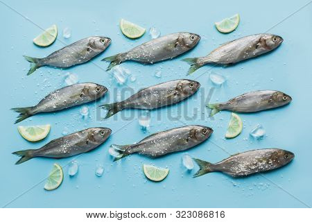 Bluefish With Lemon, Sea Salt, Lemon On Pastel Blue. Fish Pattern With Space For Text. View From Abo