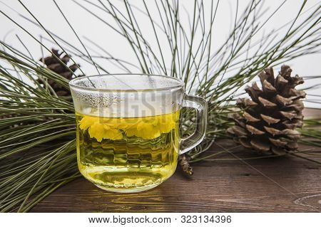 Mum Flower Tea In A Glass Mug. A Close Up Photo Of A Glass Cup Of Mum Flower Tea With A Background O