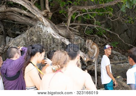 Koh Phi Phi Don, Thailand - 25 July, 2019: Huge crowd of tourists on the small Monkey Beachi, Phi Phi Island, Thailand.