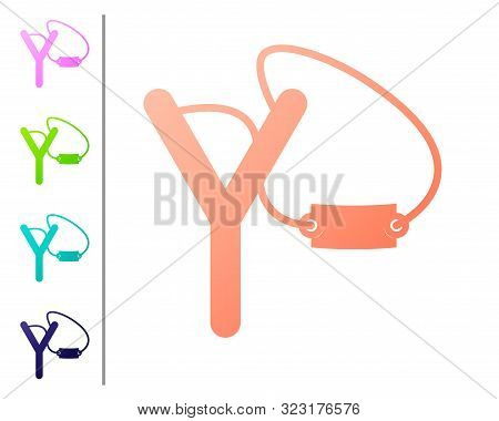 Coral Slingshot Icon Isolated On White Background. Set Color Icons. Vector Illustration