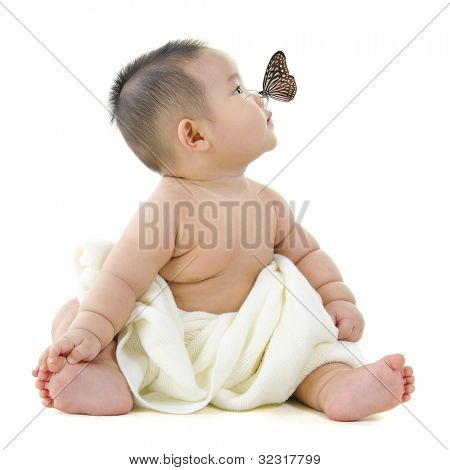 Butterfly flying to Asian baby boy nose, on white background poster