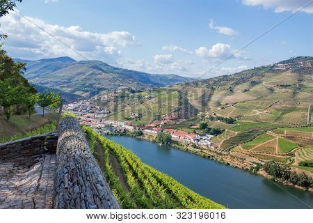 Douro Valley. Vineyards landscape of the Porto wine, near Pinhao village, Portugal. View from Casal de Loivos