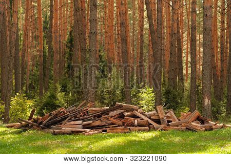 Pile Of Firewood. Preparation Of Firewood For The Winter And Use For Cooking, Firewood Background. A
