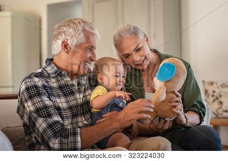 Toddler playing with old grandparents and teddy bear stuff toy. Cheerful grandfather and smiling grandmother with grandchild. Cute toddler boy playing with senior man and woman sitting on couch.