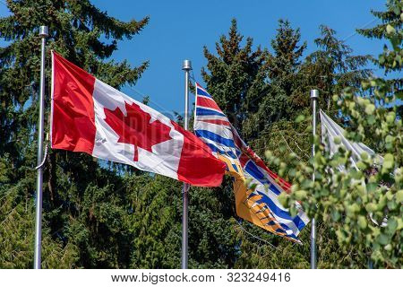 Canada And British Columbia (bc) Flag Blowing In The Wind And Trees On A Bright Sunny Day.