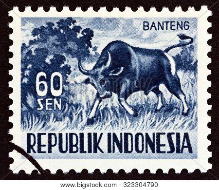 Indonesia - Circa 1956: A Stamp Printed In Indonesia Shows Bos Banteng, Circa 1956.