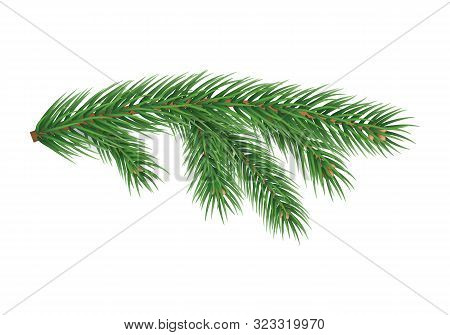 Realistic Branch Of Christmas Tree Isolated On White Background. Merry Christmas And Happy New Year