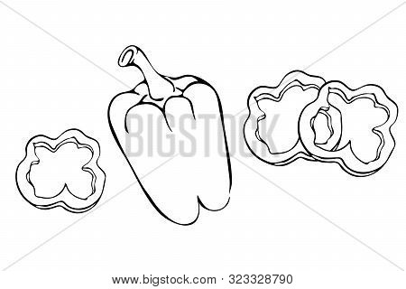 Bell Pepper Or Paprika With Slices Outline Illustration Isolated On White Background. Hand Drawn Pep