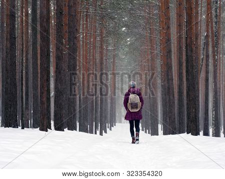 A Lonely Young Girl With A Backpack Walks Through The Snow-covered Beautiful Forest. The Effect Of M