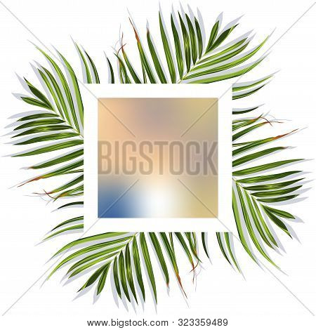 Colorful T-shirt Tropical Desing. T-shirt Tropical Desing. Floral Jungle Palm Background. Vector Tro
