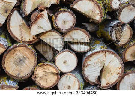 poster of Stack of logs. Stack of firewood close up. Logs cuts prepared for fireplace. Woodpile. Wood for fireplace. Wood for winter. Firewood background .
