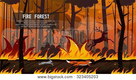 Scary Animals Fox Hare Deer Run In Forest Fire Vector Illustration. Wood In Flame, Tree Blaze, Pine