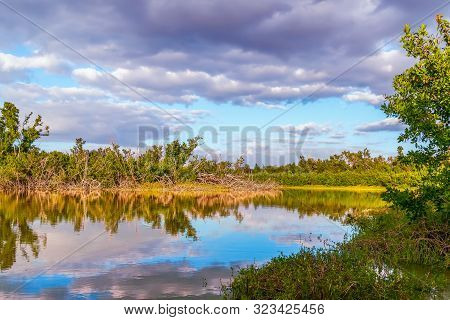 Eco Pond In Everglades National Park. Florida. Usa