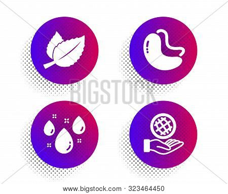 Mint Leaves, Cashew Nut And Rainy Weather Icons Simple Set. Halftone Dots Button. Safe Planet Sign.