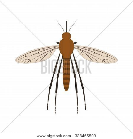 Cartoon Color Mosquito Insect Symbol Of Malaria, Epidemic And Pest. Vector Illustration Of Attack Bl