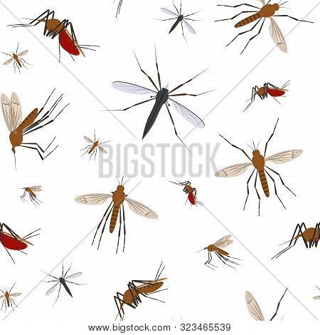 Cartoon Color Mosquito Insect Seamless Pattern Background Symbol Of Malaria, Epidemic And Pest. Vect
