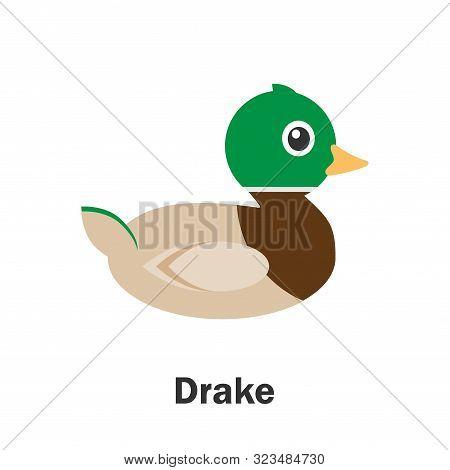 Drake In Cartoon Style, Pond Card For Kid, Preschool Activity For Children, Vector Illustration