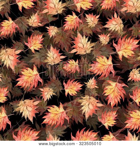 Seamless Watercolor Halloween Pattern Of Autumn Maple Leaves On Black Background